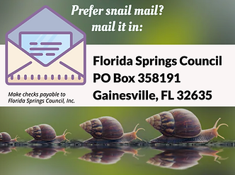 Florida Springs Council Mailing address
