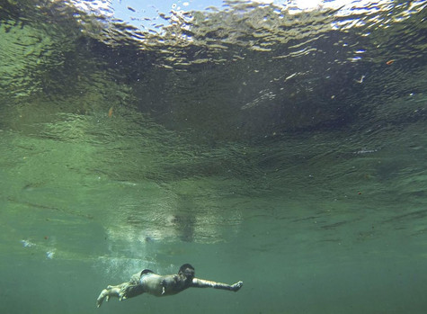 Saving Florida's springs isn't possible unless agriculture changes its ways