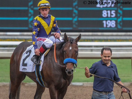 Cruel Intention Named 2018 Champion California-Bred 2-Year-Old Male