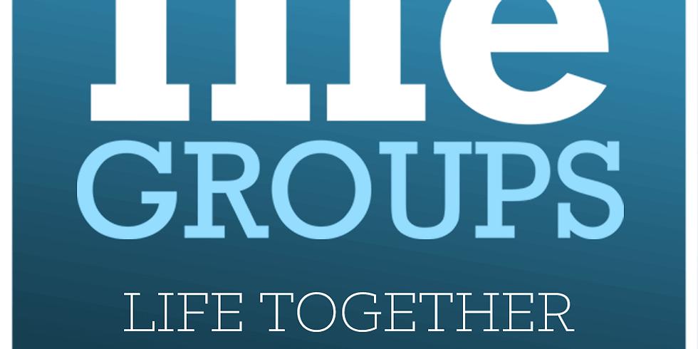 LifeGroups (1)