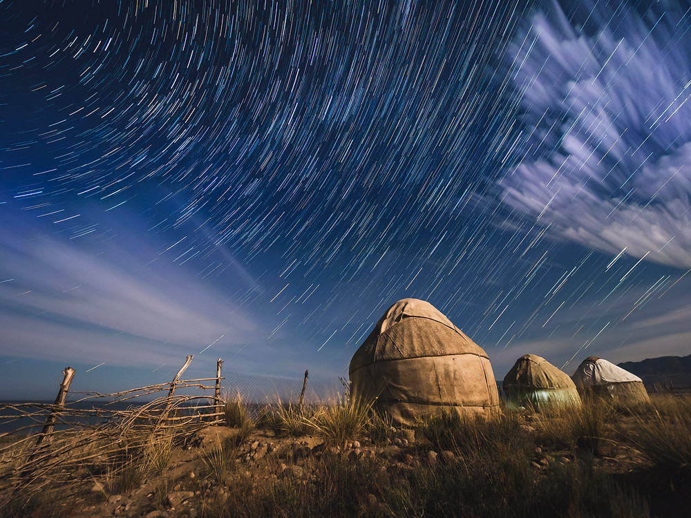 Bel-Tam Starry Skies (Matt Horspool)