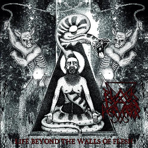 Black Mass Pervertor – Life Beyond The Walls Of Flesh MLP