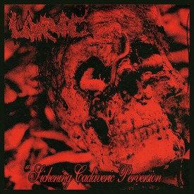 "Larvae - Sickening Cadaveric Perversion 7""EP"