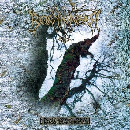 Borknagar - The Olden Domain LP (Black Vinyl)