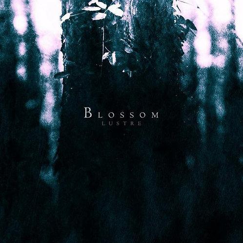 Lustre - Blossom LP
