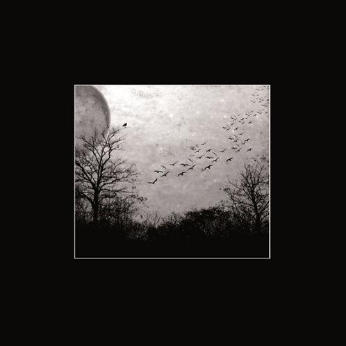 Deathgate Arkanum - Seelen LP