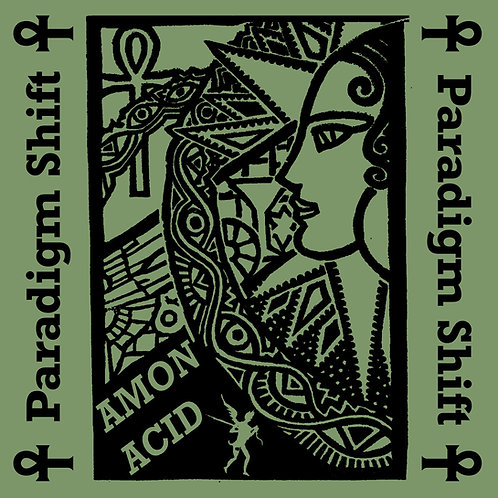 Amon Acid - Paradigm Shift LP (Black Vinyl) (PRE-ORDER)