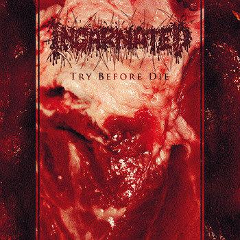 Incarnated – Try Before Die CD