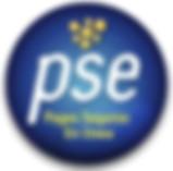 Profesor partiular Finazas Contabilidad Excel en Medellin forma de pago PSE