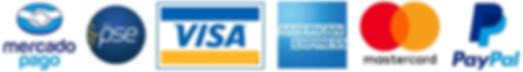 Pagos electronicos videotutoriales Finanzas Contabilidad Excel Tutoriales