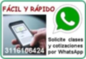 Profesor partiular Contabilidad Finanzas Excel Estadistica en Medellin Clases a domicilio
