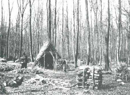 Lives of a Woodsman