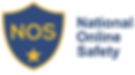National Online Safety Logo.png