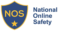 National Online Safety Logo.png