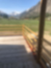 Redwood Before.JPG
