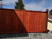 Privacy Fence.jpg