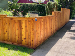 Portland Cedar Fence
