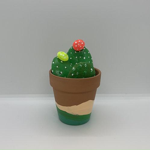 No water stone cacti and 3 inch terra cotta hand paintedpot
