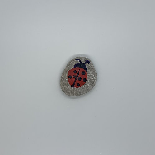 Good luck lady bug rock is ready for you