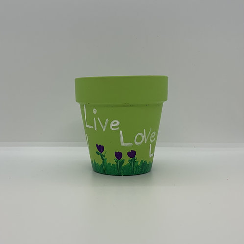 One of kind 3 inch terra cotta Live Love Grow pot is awesome!