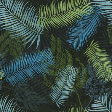 nocturne tropic