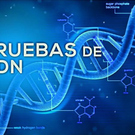 #DOCUMENTOS - PRUEBAS DE INOCENCIA DE BARCO. EL VATICANO MANTIENE FALSA AFRENTA CONTRA PADRES REALES