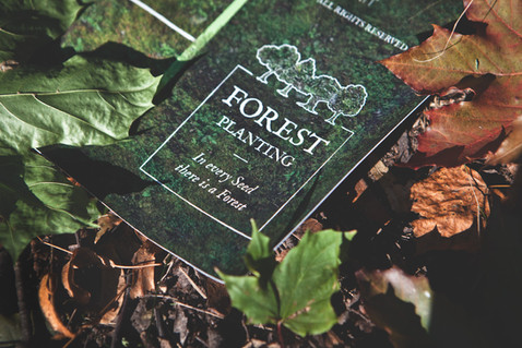 #Forest Planting