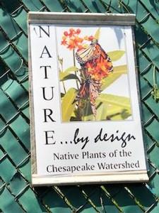 Nature By Design Nursery, Alex