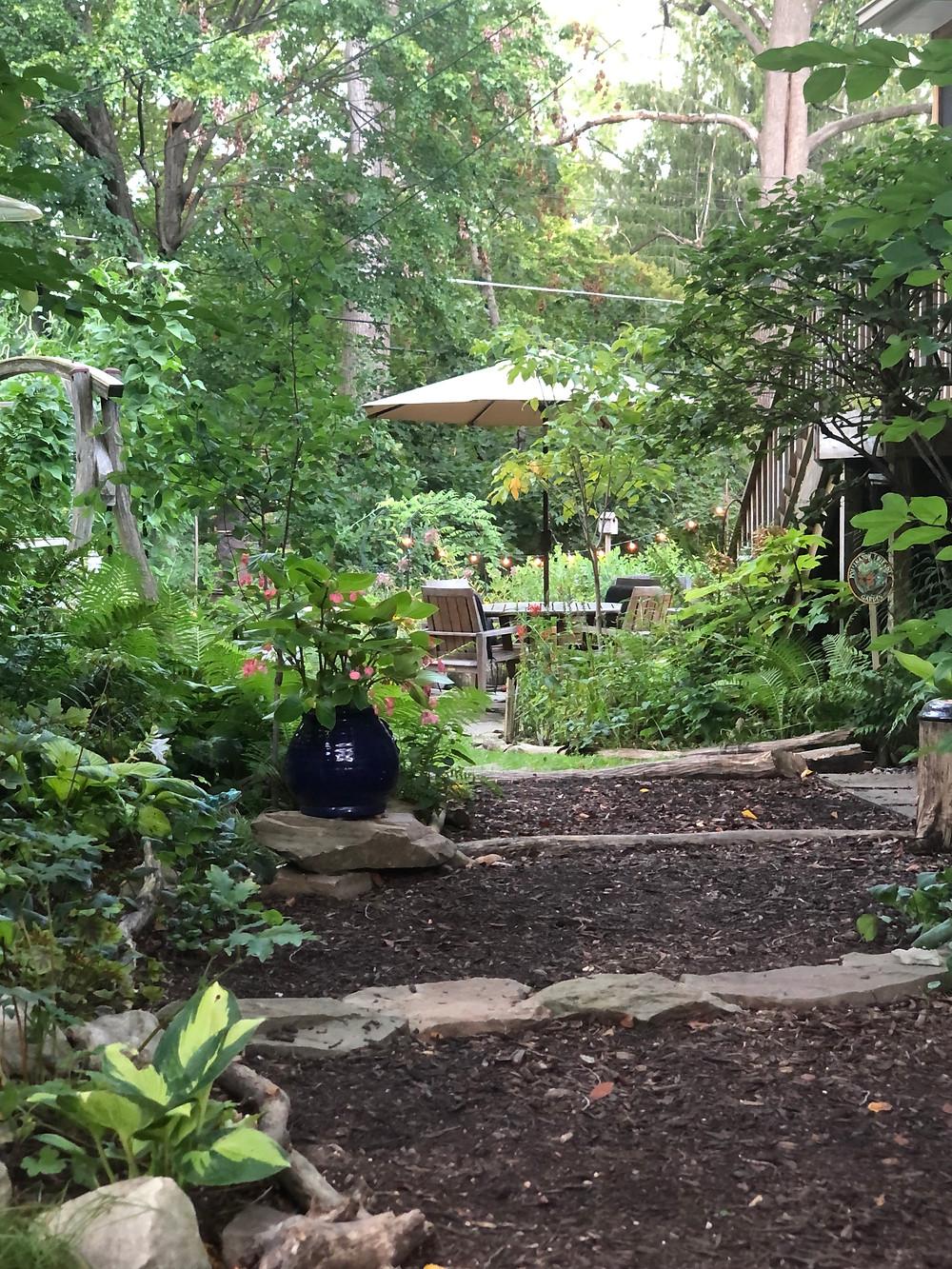 side yard native plant walkway maryland