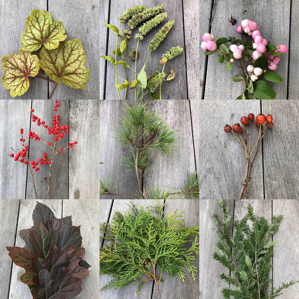 Mosaic of native plants for indoor decor