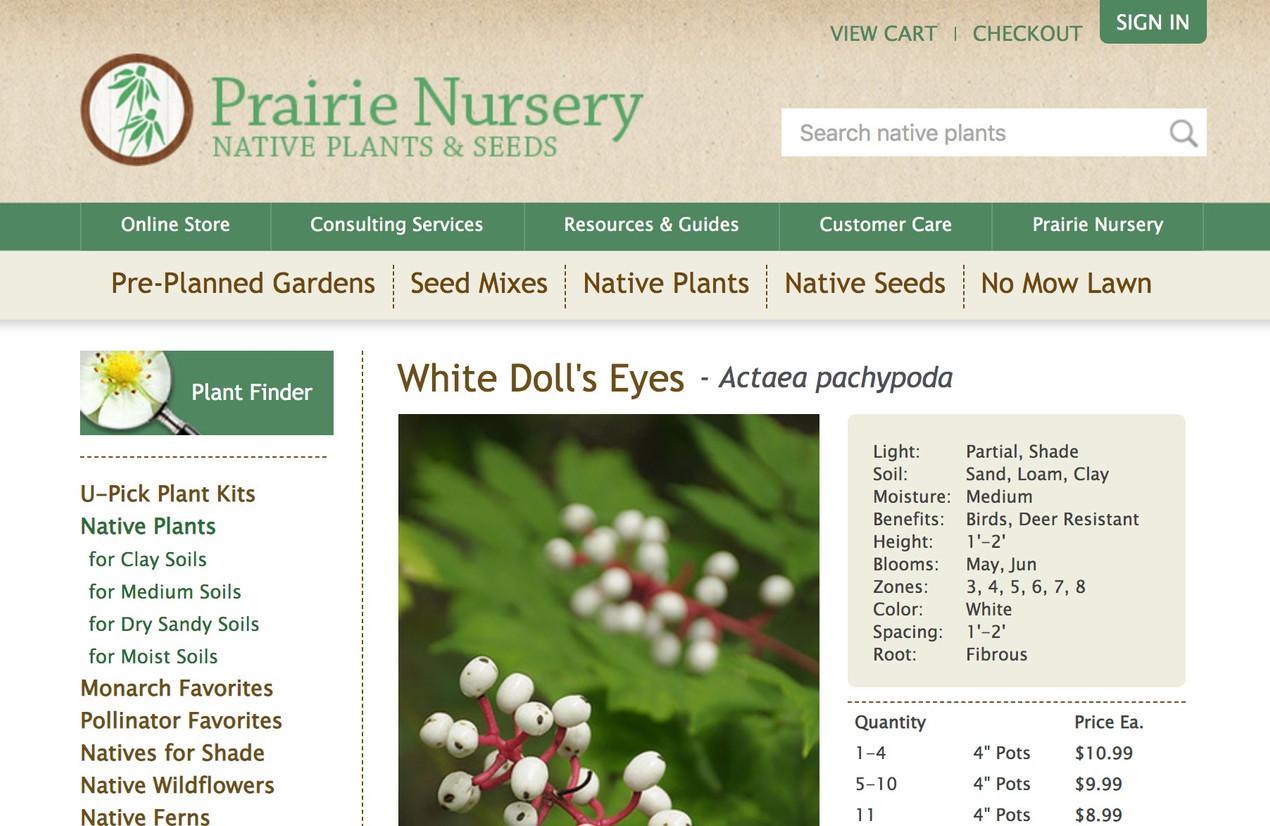 Native Plants: Prairie Nursery