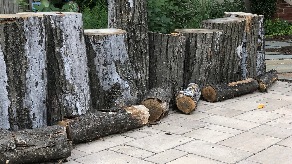 artful wood edge for permeable driveway