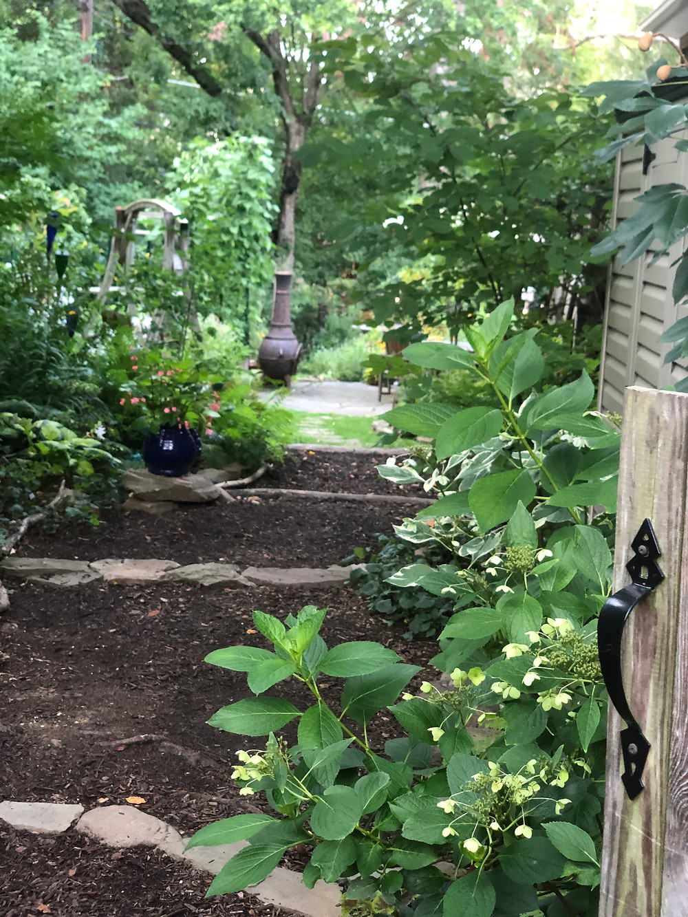 side yard entrance to native plant garden