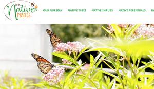 Direct Native Plants