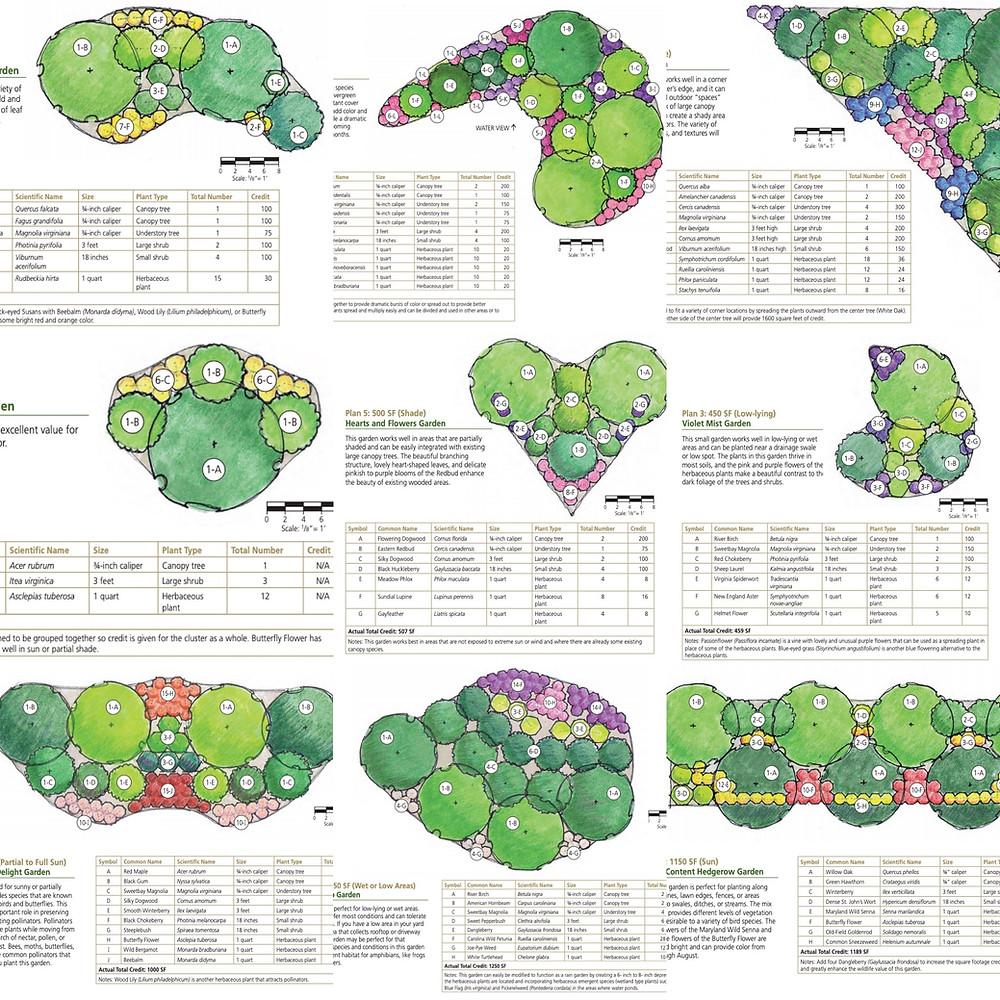 Native planting templates