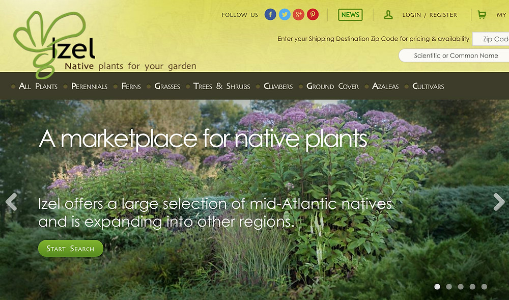 Izel Plants - Native Nursery for Washington DC, Maryland, Viriginia
