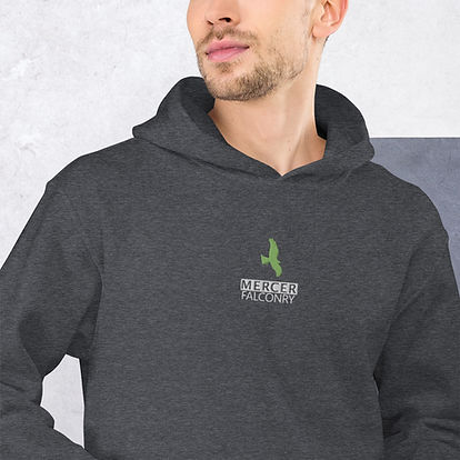 unisex-heavy-blend-hoodie-dark-heather-z