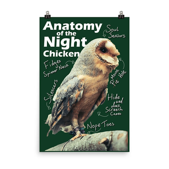 Anatomy of the Night Chicken Poster