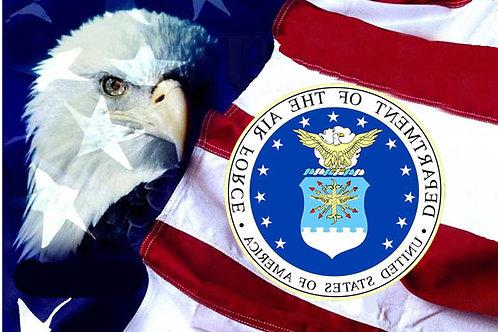 USAF SAC Eagle Flag
