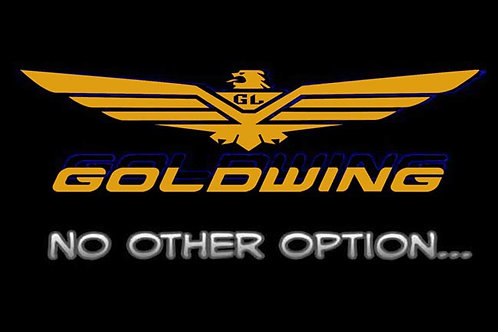 Goldwing No Other Option