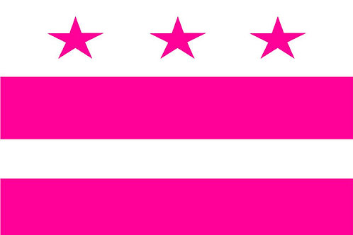 District of Columbia Motorcycle flag