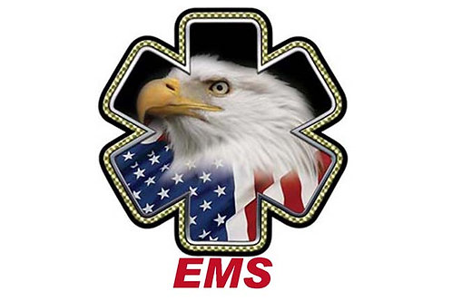 EMS Eagle Motorcycle Flag