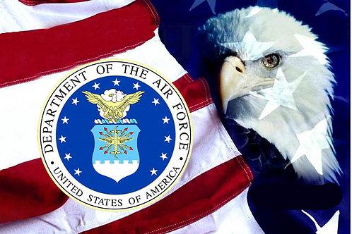 USAF Eagle  Flag
