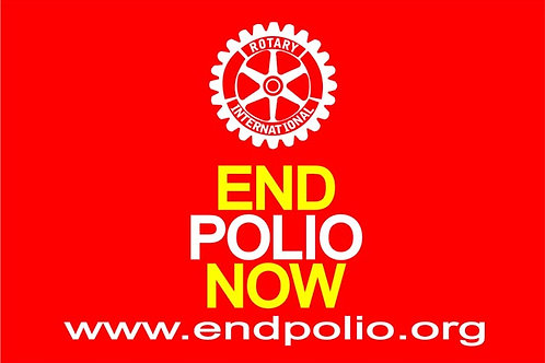 End Polio Motorcycle Flag