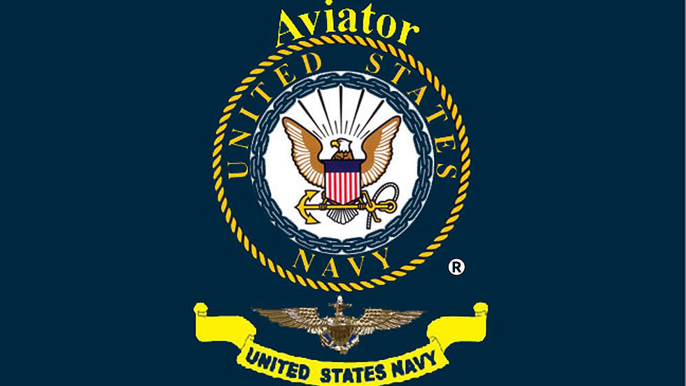 US Navy Aviator