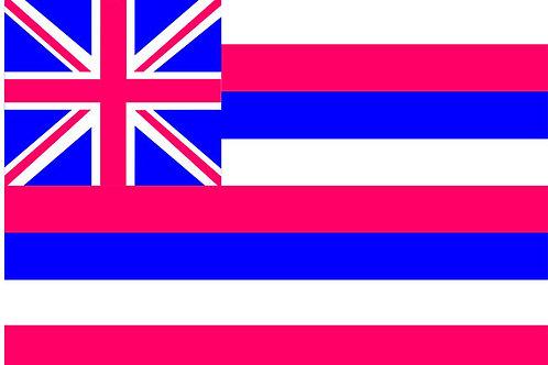 Hawaii Motorcycle flag