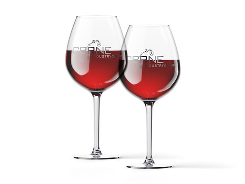 Riedel Wine Glass (Pair)