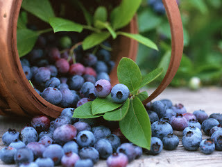 Bilberry and Lavender Cheesecake recipes