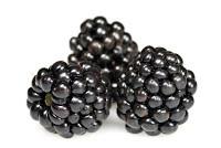 Trio of Blackberry Desserts Blackberry Sorbet