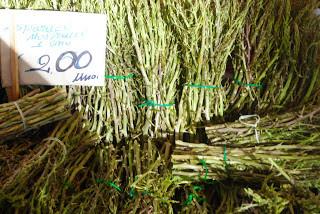 Wild Asparagus Sicilian Wild Food